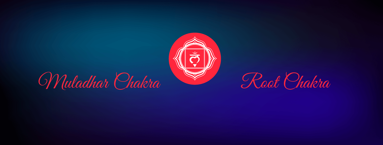Muladhar Charkra or The Root Chakra