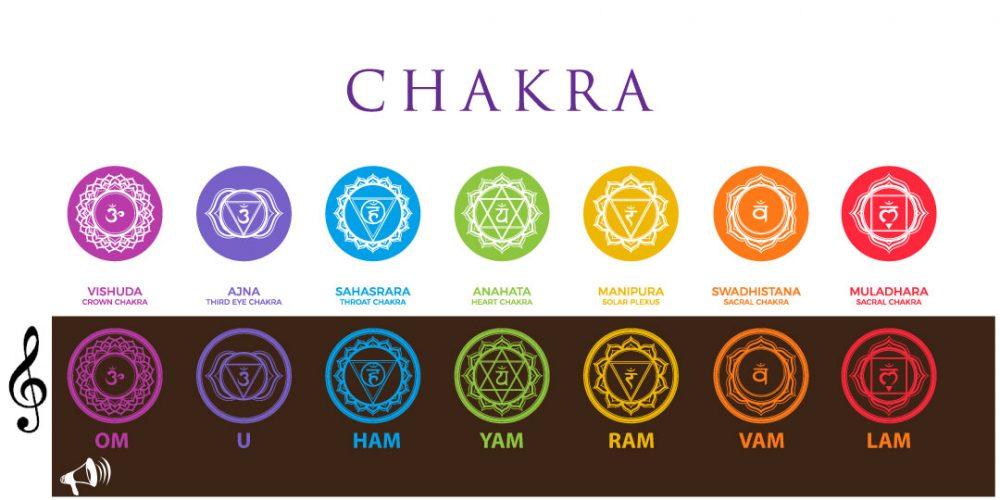 Chakra and its associations